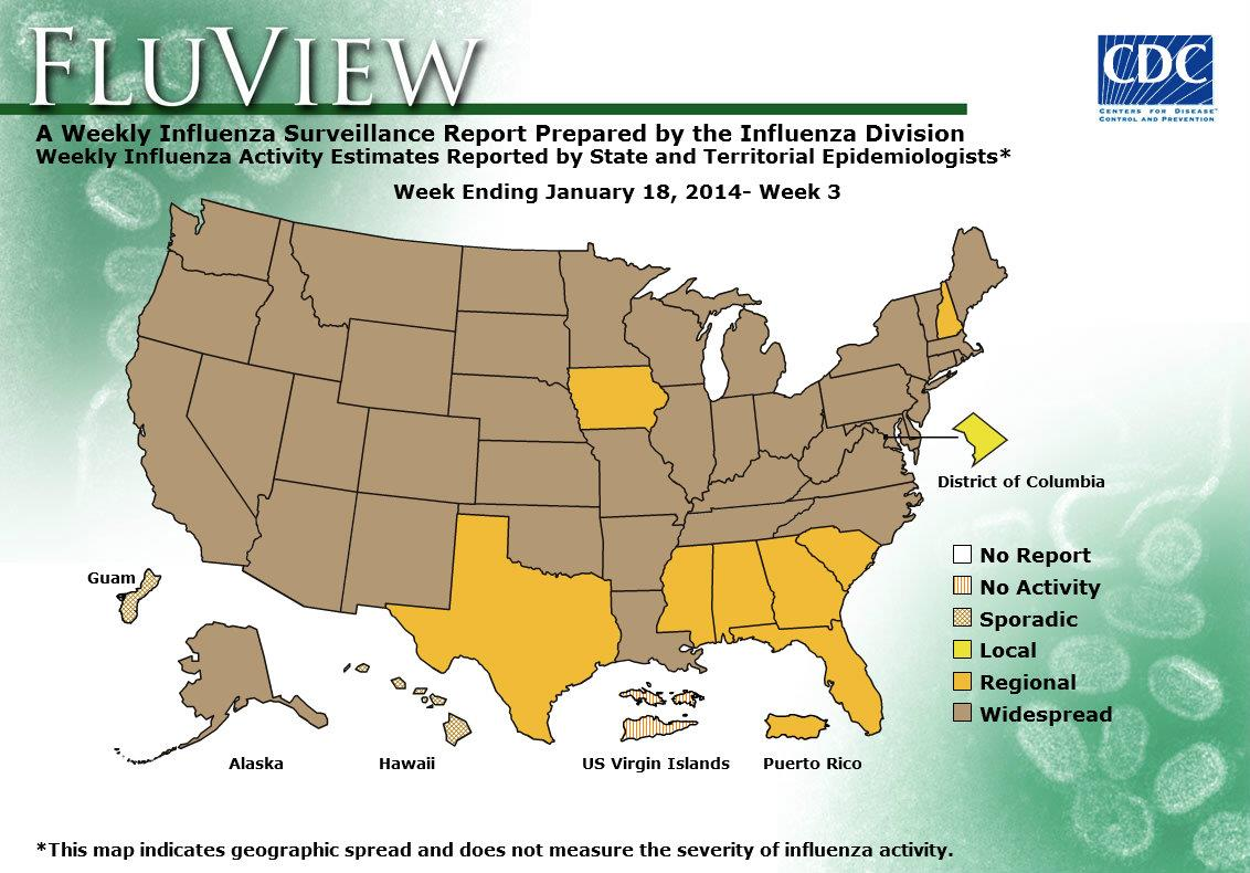 CDC Seasonal Influenza Flu Weekly Report Influenza Summary