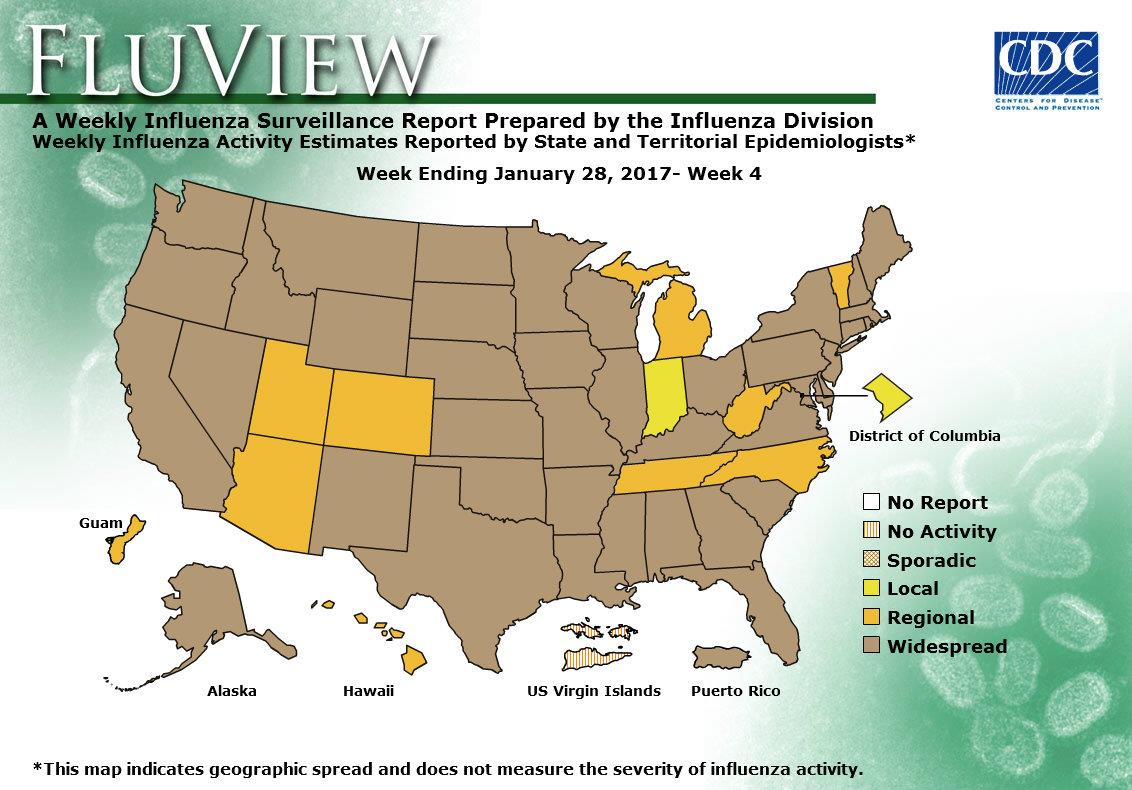 Weekly Flu Activity Map: Week 04