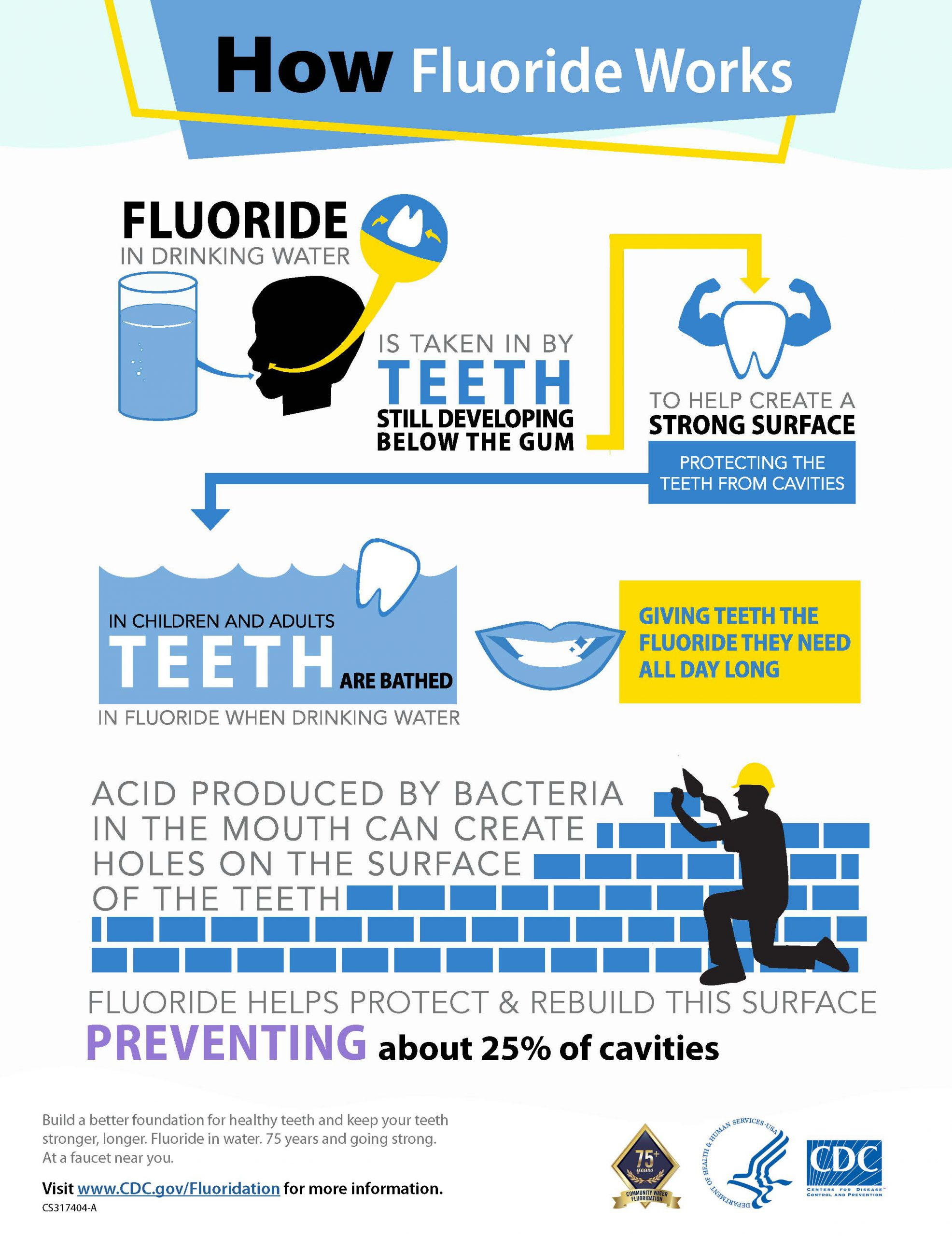 Infographic on how fluoride works.