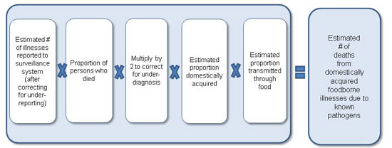 Figure 3 is a diagram, depicting an equation used to estimate deaths from foodborne illnesses due to known pathogens for the year 2011. The equation is as follows: Estimated number of illnesses reported to surveillance system (after correcting for under-reporting), multiplied by the proportion of persons who died, multiplied by 2 to correct for under-diagnosis, multiplied by estimated proportion domestically acquired, multiplied by estimated proportion transmitted through food. This results in the estimated number of deaths from domestically acquired foodborne illnesses due to known pathogens.