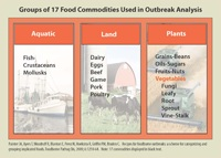 Chart: Groups of 17 Food Commodities (Categories) Used in Outbreak Analysis
