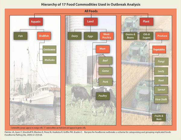 Graphic: Hierarchy of 17 Food Commodities Used in Outbreak Analysis