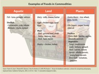 Chart: Examples of Foods in Commodities (Categories)