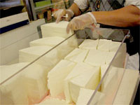 Blocks of Queso Fresco Cheese
