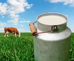 Image of glass of milk with a cow in the background.