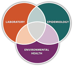 Inter-connected elipse: Laboratory, Epidemiology, Environmental Health