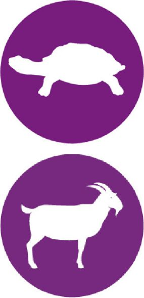Illustration of a goat and a turtle over a purple circle