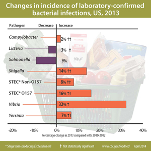 Figure: Changes in incidence of laboratory-confirmed bacterial infections, United States, 2013 compared with 2006-2008 (data are preliminary). Yersinia = 7% decrease, Vibrio = 32% increase, STEC Non-O157  = 8% increase, STEC O157 = 16% increase, Shigella = 14% decrease, Salmonella = 9% decrease, Listeria = 3% decrease, Campylobacter = 2% increase
