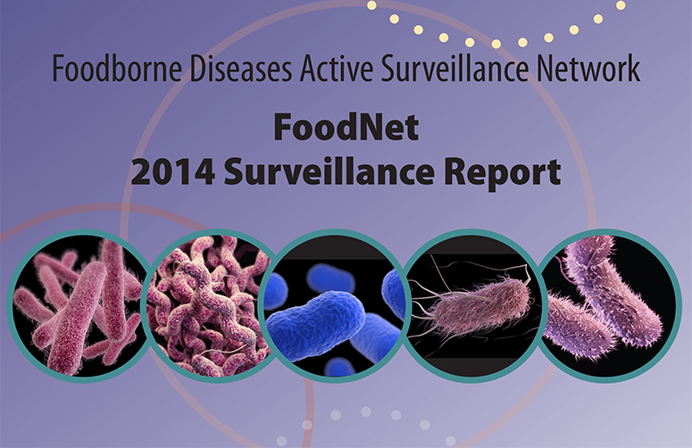 In 2014, FoodNet identified 19,507 laboratory-confirmed cases of infection, 4,476 hospitalizations, and 75 deaths.