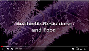 foodborne germs becoming antibiotic resistance video
