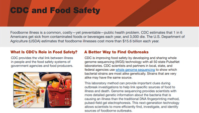 Thumbnail version of cdc food safety fact sheet