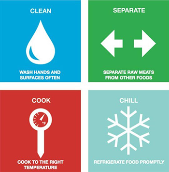 Graphic of the four steps to stay safe from food poisoning: Clean, Separate, Cook, and Chill