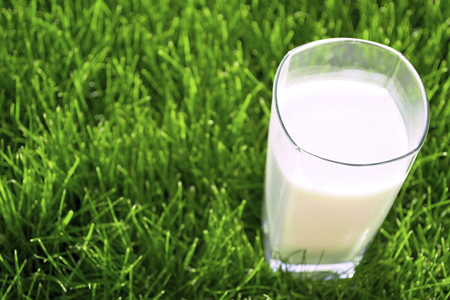 Glass of milk sitting on grass