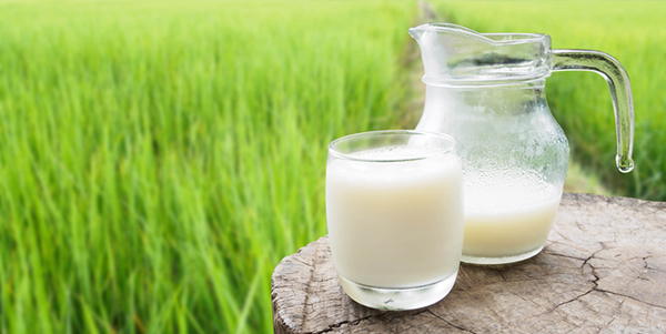 New CDC Study Shows Increase in Raw Milk-Associated Outbreaks