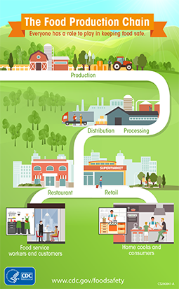 The Food Production Chain. Click the image to get a larger view.