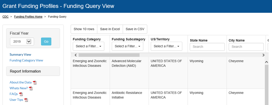 Fiscal Year 2019 Funding Profiles - Query view