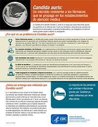 cover sheet image for spanish c. auris fact sheet