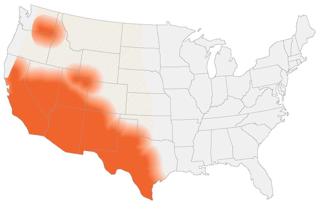 Areas where Valley fever lives in the US.