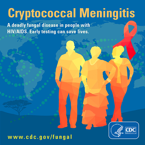 Image showing button for download on Cryptococcal Meningitis. A deadly fungal disease in people with HIV/AIDS.