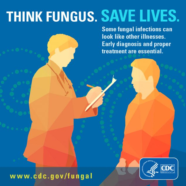 Button for download to facebook or instagram on Think Fungus. Save lives.