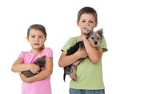 little girl holding a cat and little boy holding a dog