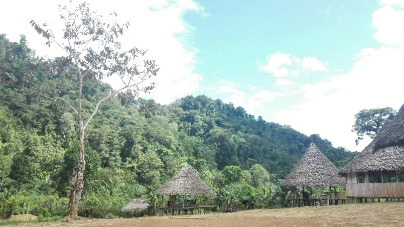 Huts in a remote location in Columbia