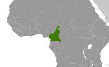 CDC Global Health - Cameroon
