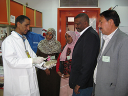 CDC working in Egypt