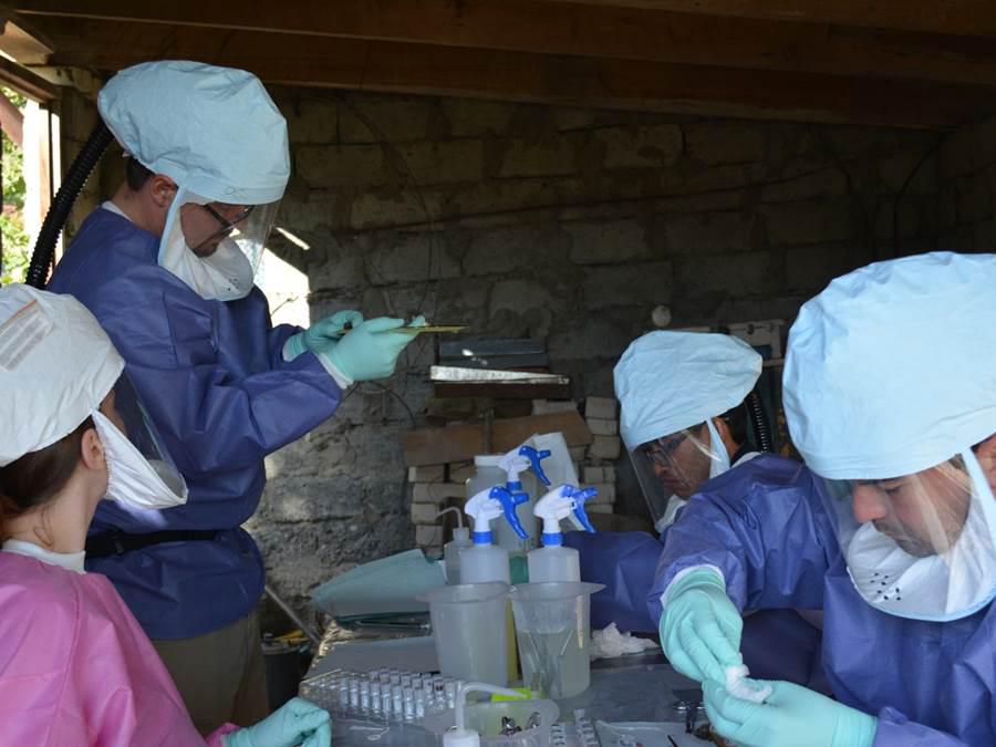 CDC Global Health - Georgia