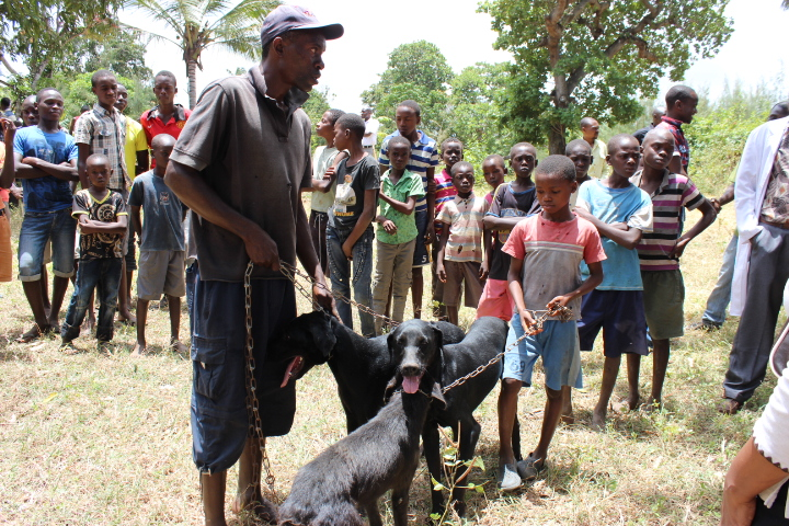 Kenya makes great strides towards Rabies Elimination