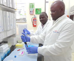 Workers in a Uganda lab