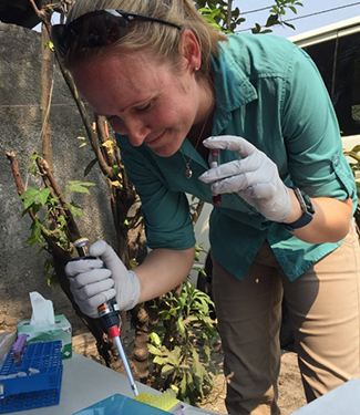 Dr. Aimee Summers preparing whole blood samples for DMF-ELISA at a Health Center in Biyela, Kinshasa Province, DRC. Photo: Alaine Knipes.