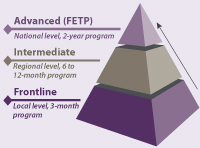 FETP offers three levels of experience-based training – frontline, intermediate, and advanced – depending on the needs of a country's public health system. Potential progression of of training/career path increases from Frontline to Intermediate to Advanced.