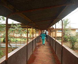 Staff walk through a tuberculosis hospital in Sierra Leone.