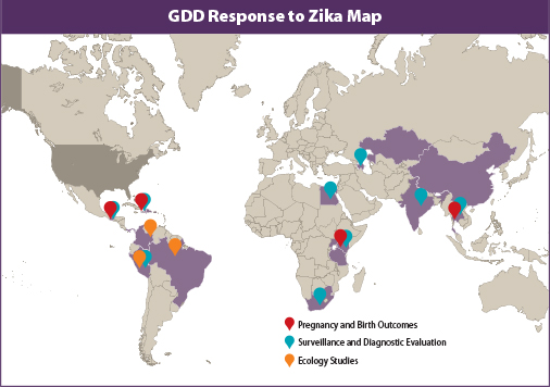 GDD Response to Zika Map: highlights Pregnancy and Birth Outcomes, Surveillance and Diagnostic Evaluation and Ecology Studies