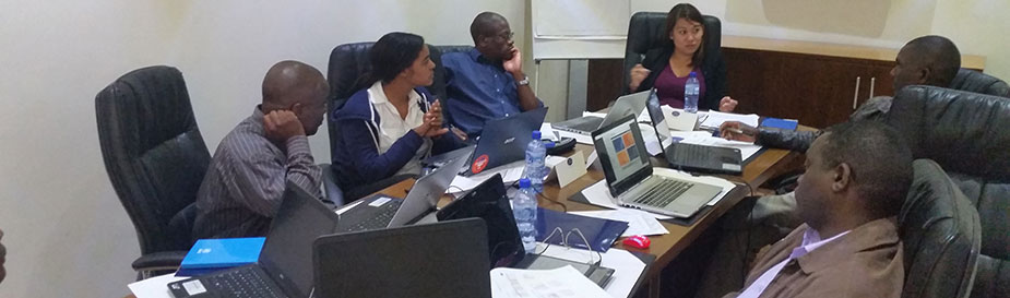 CDC team members and WHO-AFRO representatives conduct an IDSR e-Learning pre-launch workshop in Blantyre, Malawi.