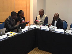 Representatives from the Namibia Ministry of Health and Social Services and partner organizations develop their vision for a Namibia NPHI.