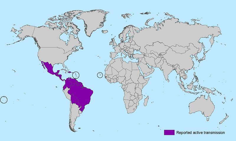 Zika Outbreak World Map