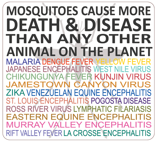 Mosquitoes casue more death and disease than any other animal on the planet