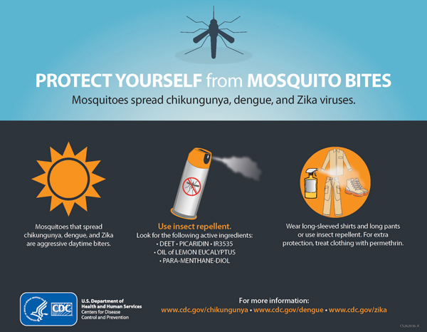 Protect yourself from mosquitoes
