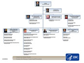 small image of GDDER organizational chart