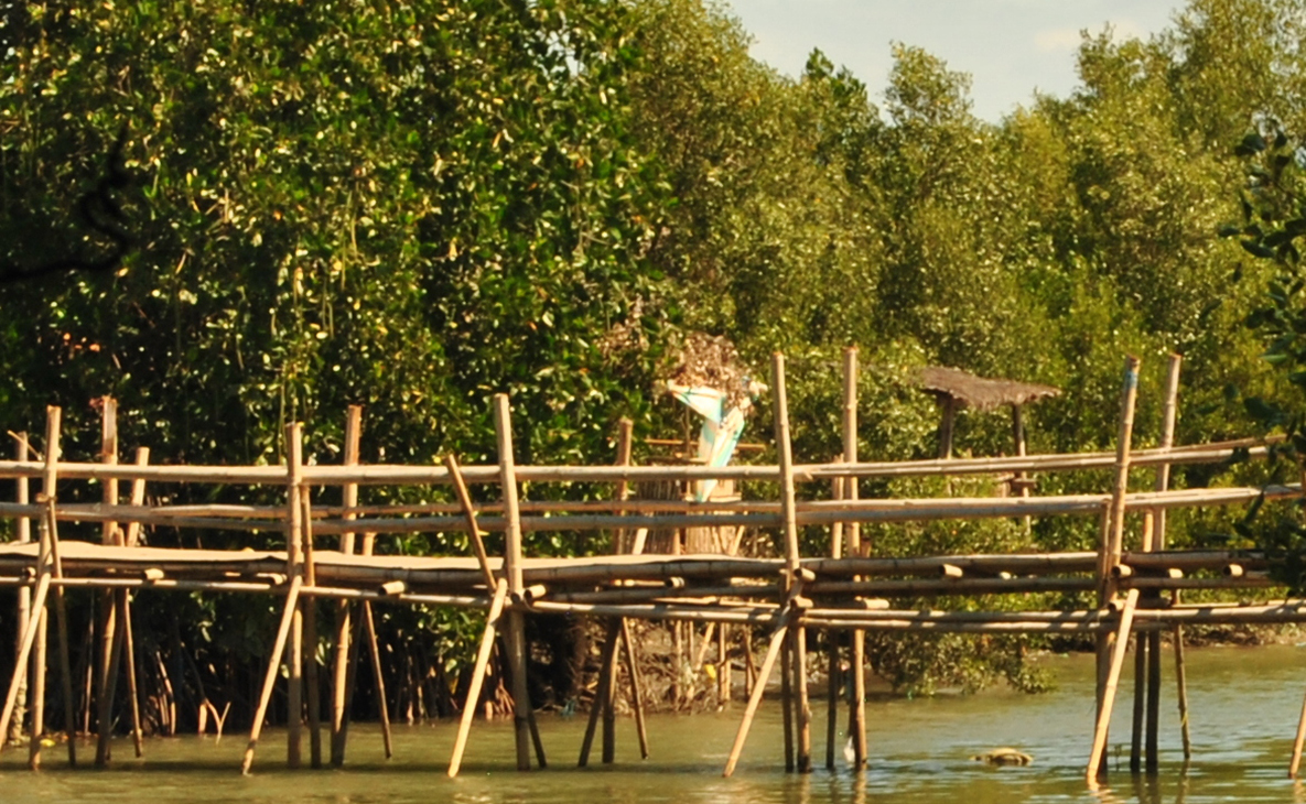 A rustic bridge made mainly of bamboo.
