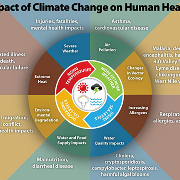 what is global environmental change