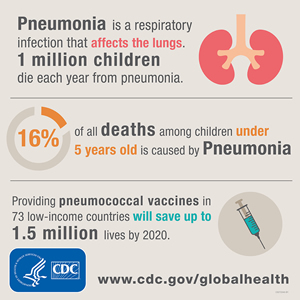 Pneumonia is a respiratory infection that affects the lungs. 1 million children die each year from pneumonia. 16% of all deaths among children under 5 years old is caused by pneumonia. Providing pneumococcal vaccines in 73 low-income countries will save up to 1.5 million lives by 2020
