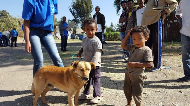 Boy with his dogs at a mass vaccination event in Addis Ababa, December 2016.