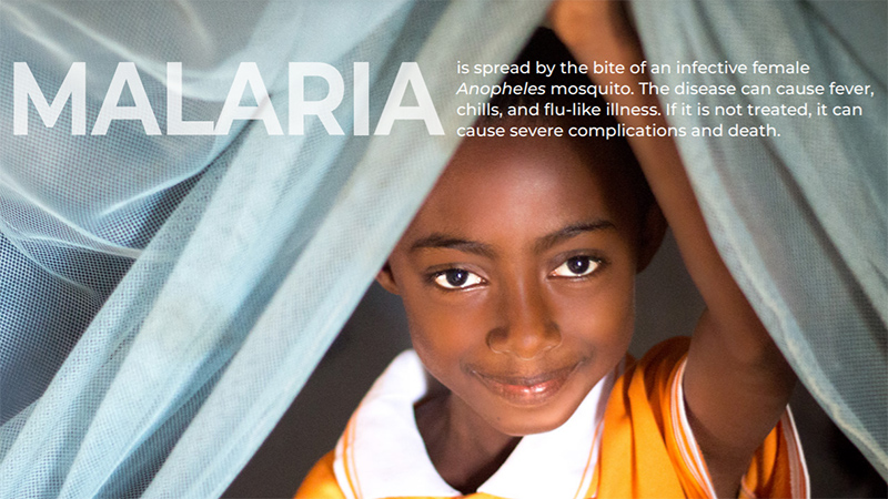 malaria-fact-sheet
