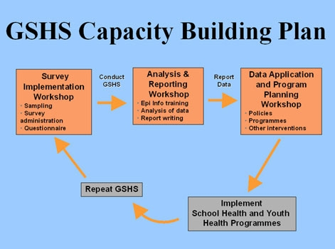 Capacity Building Image