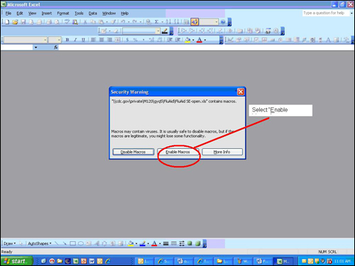 Picture displaying how the user will enable to macros that are needed to run the FluAid Special Edition software tool.