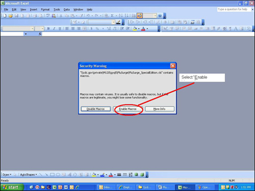 Picture displaying how the user will enable to macros that are needed to run the FluSurge Special Edition software tool.