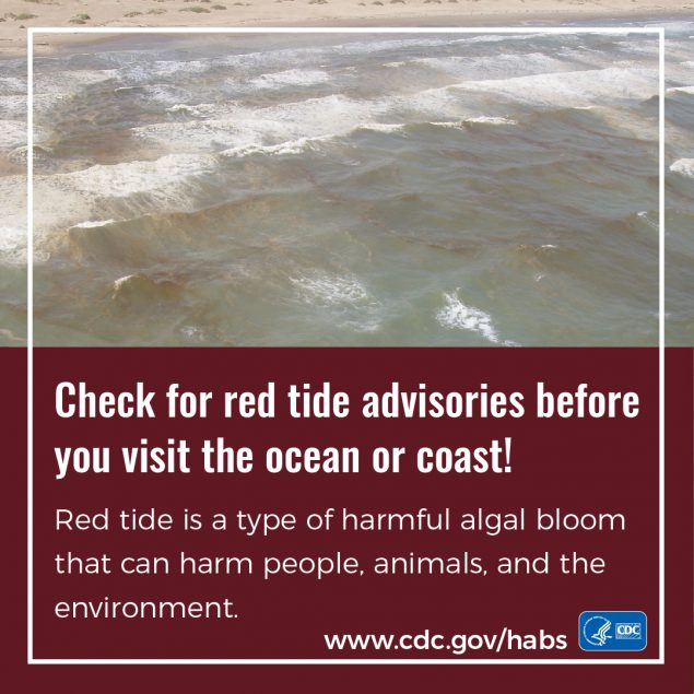 Check for red tide advisories before you visit the ocean or coast! badge thumbnail